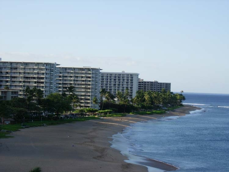 The Whaler, Maui - Rentals: The Whaler, Maui - OCEANFRONT RENTALS: The Whaler, Maui - Condos: The Whaler, Maui - Condo Rentals: The Whaler, Maui - Vacation Rentals: The Whaler, Maui - Vacation Condo Rentals: The Whaler, Maui - Vacation Condo Rentals: The Whaler, Maui - Vacation Condos: The Whaler, Maui - Rentals on Kaanapali Beach: The Whaler, Maui - Condos on Kaanapali Beach: The Whaler, Maui - Luxury Condo: The Whaler, Maui - Luxury OCEANFRONT CONDO: The Whaler, Maui - Kaanapali Condos: The Whaler, Maui - Kaanapali Rentals: The Whaler, Maui - Kaanapali Beach Condos: The Whaler, Maui - Kaanapali Beach Rentals: OCEANFRONT CONDOS FOR RENT * The Whaler Maui BY OWNER CONDOS * Whaler BY OWNER * Whaler OWNER DIRECT * OCEANFRONT CONDOS AT THE WHALER MAUI * OWNER CONDOS AT THE WHALER * Whaler Maui OWNER Condo Rentals * The Whaler Maui OWNER CONDOS * Whaler Kaanapali Owner Condo Rentals * Whaler Kaanapali Condos * The Whaler Kaanapali Condo Rentals * Whaler Condos * The Whaler - OCEANFRONT * The Whaler - BEACH FRONT * The Whaler - Oceanfront * The Whaler Maui Lodging * Owner Oceanfront Condo Rentals At The Whaler Maui